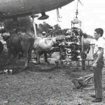 Cambio de motor en Upala a un DC-3 de LACSA